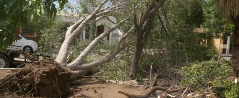 Lluvia de 7 horas deja daños 'leves' en la ciudad