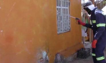 Combate Salud Sonora al mosco todo el año