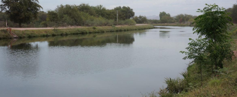 Muere Conductor Al Caer Carro A Canal Alto Al Norte De La Calzada Villanueva