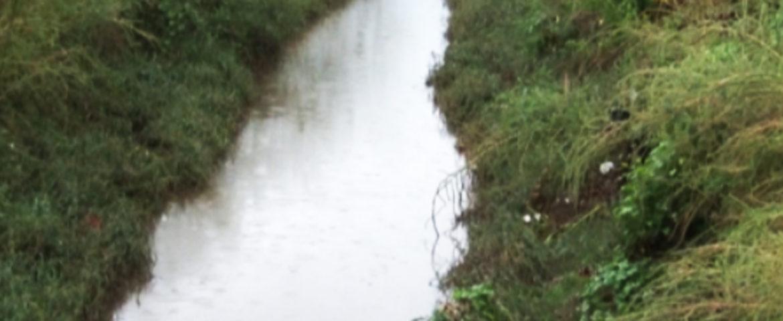 Presenta signo de violencia cadáver encontrado en dren de aguas del parque industrial