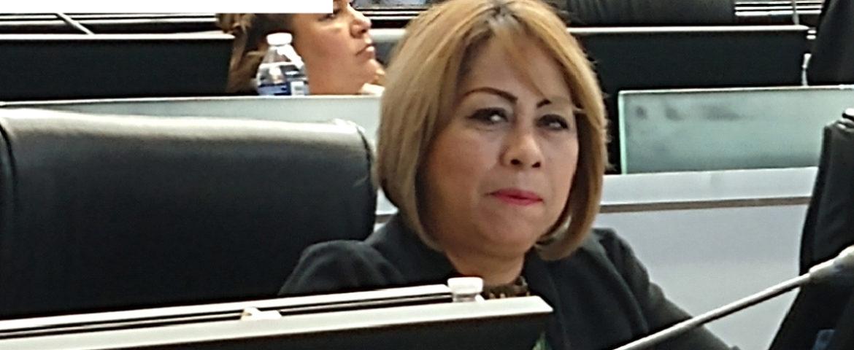 Presenta Diputada Miroslava Luján declaración 3 de 3