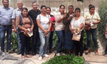 Realizan huatabampenses visita a la UES benito Juárez