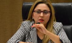 Cuenta pública refleja urgencia de ley de austeridad: dip. Diana Platt Salazar