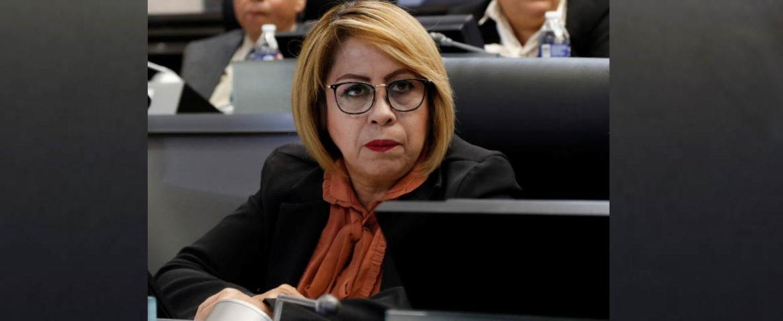 Propone Diputada Miroslava Luján Reformas A La Ley Orgánica Del Congreso Del Estado