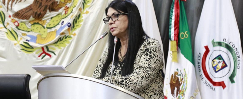 Propone Diputada Ernestina Castro Reformar Y Adicionar Diversas Leyes Del Estado De Sonora En Materia De Extinción De Dominio