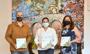 Paleta Vegetal será fundamental para forestación óptima de áreas públicas: Celida López