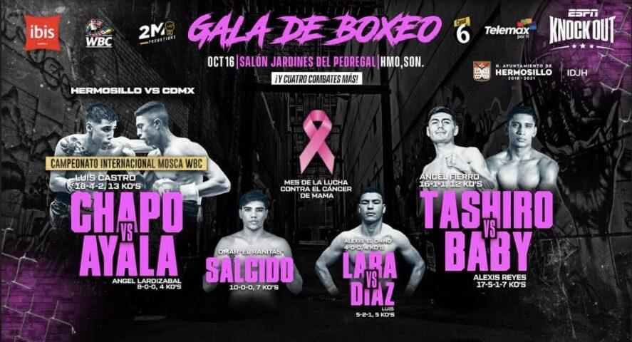 Invitan a disfrutar Gala de Boxeo el próximo viernes